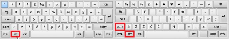 Opt-Shift слои раскладки беларуского языка латинской транскрипции.